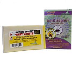 fungus gnat control nematodes pesticide