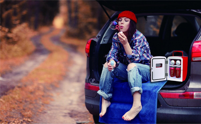 Portable Retro Design Fridge 6-Can Refrigerator Cooler Two